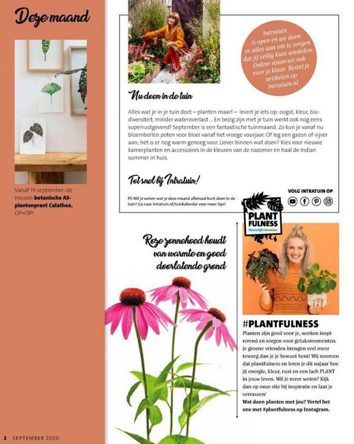 Folder Week 38 . Page 2