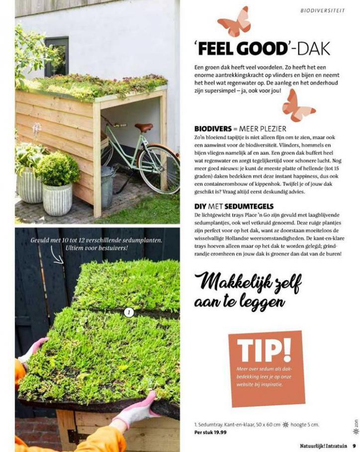 Folder Week 38 . Page 9