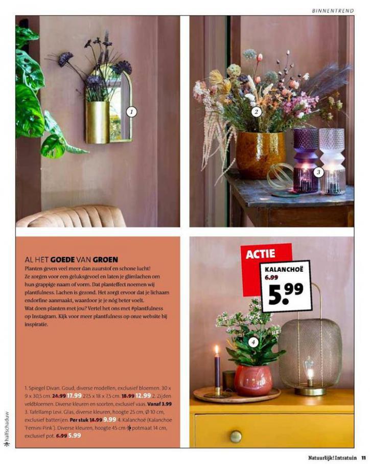 Folder Week 38 . Page 11