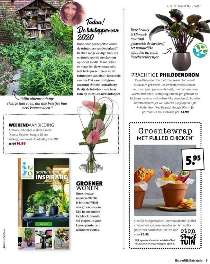 Folder Week 38 . Page 3