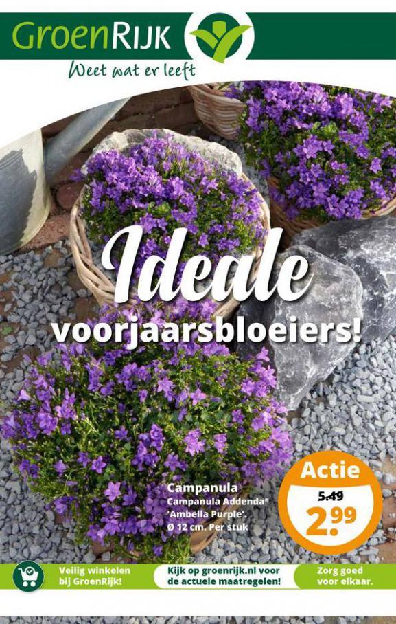 Ideale voorjaarsbloeiers! . GroenRijk (2021-04-30-2021-04-30)