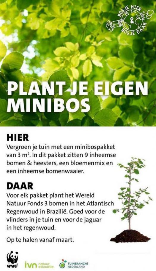 Groene plannen, groene planten . Page 14