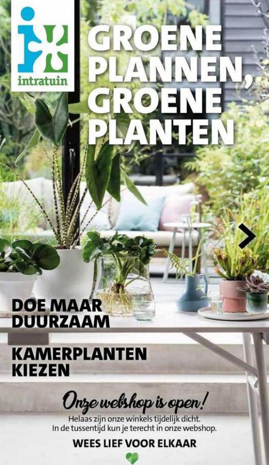Groene plannen, groene planten . Intratuin (2021-05-16-2021-05-16)