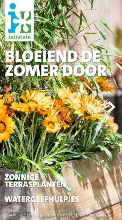 Folder week 27 2021 NL. Intratuin (2021-07-11-2021-07-11)