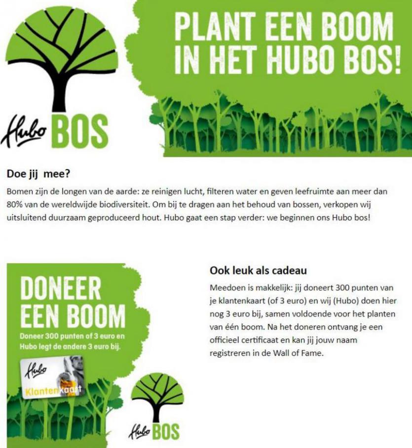 Plant een boom in het Hubo bos!. Hubo (2021-07-20-2021-07-20)